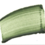 1468 – Terre Verte