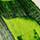 214F – Vert de vessie