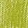 620.5 – Vert olive 5